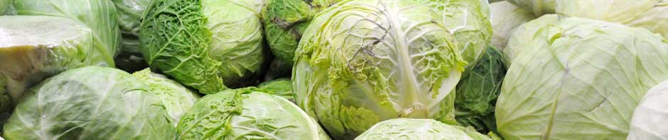 cabbage_header